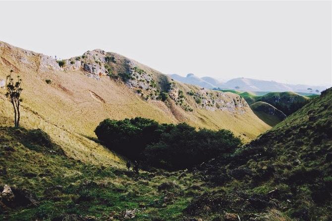Te Mata Peak, New Zealand - Nicola Odemann Photographic Travel Diaries
