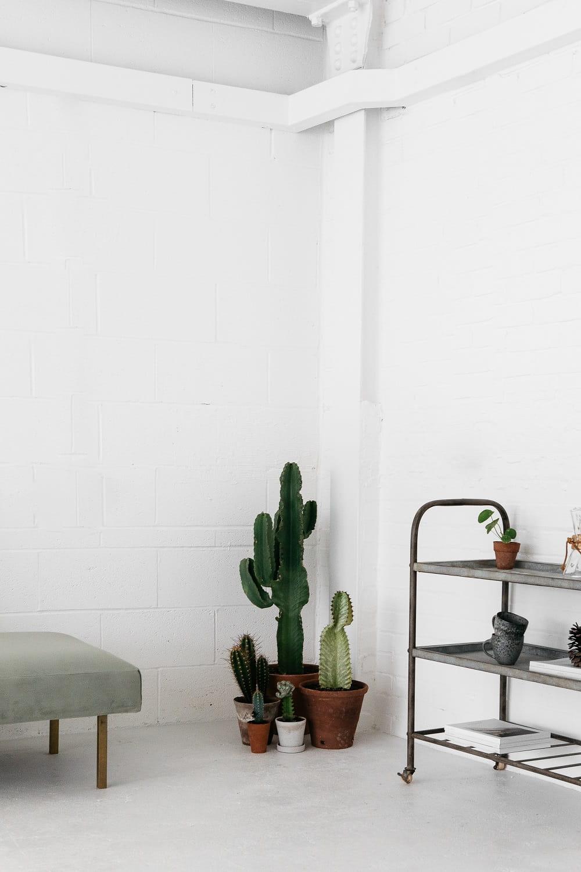 Tag: White Interior Design