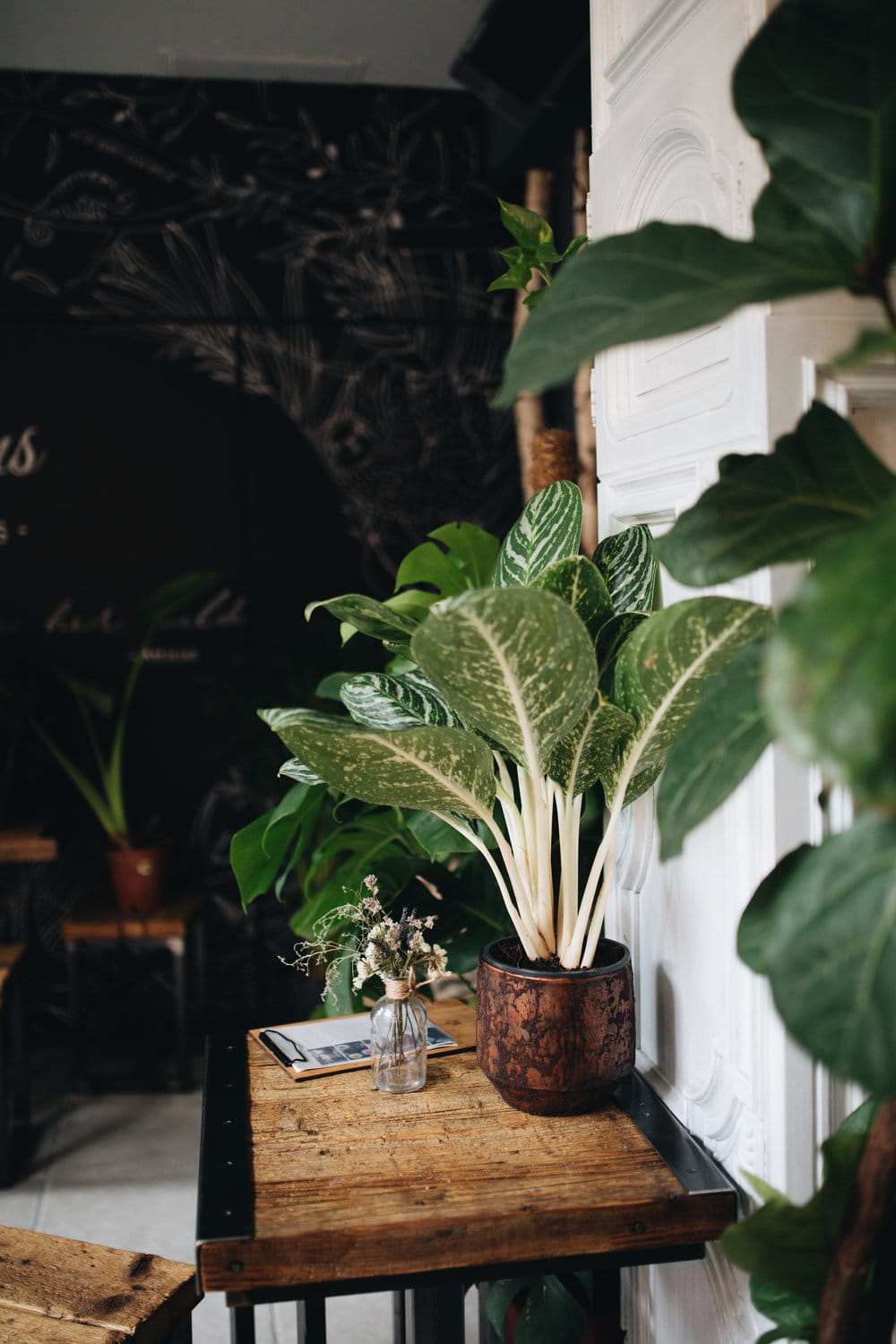 The Greens Coffee and Plants Cafe Interior, Berlin